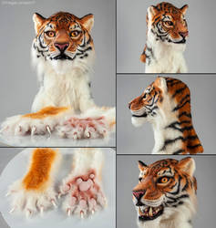 Realistic tiger partial - LINK UPDATED by OmegaLioness