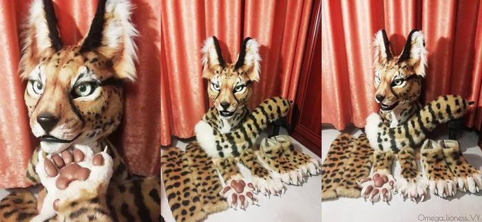 Serval partial