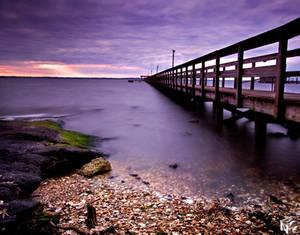 One Purple Evening