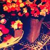 Stock Icon Flowers by cheyennemaria