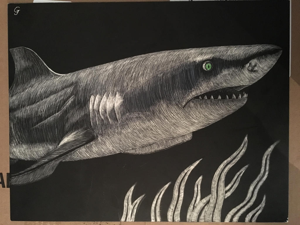 Scratchboard Sharkie by Vincent-Wullf