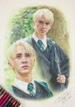 Tom Felton/ Draco Malfoy - Harry Potter Drawing