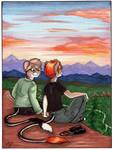 Sunset Commission