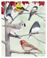 Small Birds 2009 by twapa