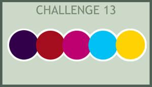 Challenge 13