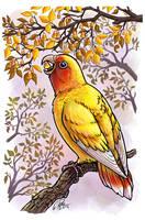 Treatbird by twapa