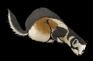 Personatus Polecat by twapa