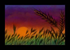 Sunset Harvest by twapa