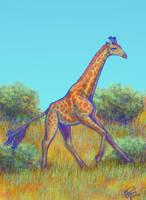 The Appealing Giraffe by twapa