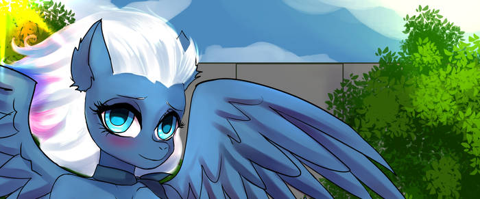 ZeBronyCaptain YCH RESULT