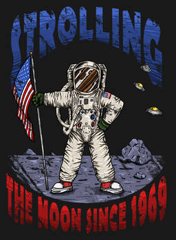 Strolling the Moon since 1969