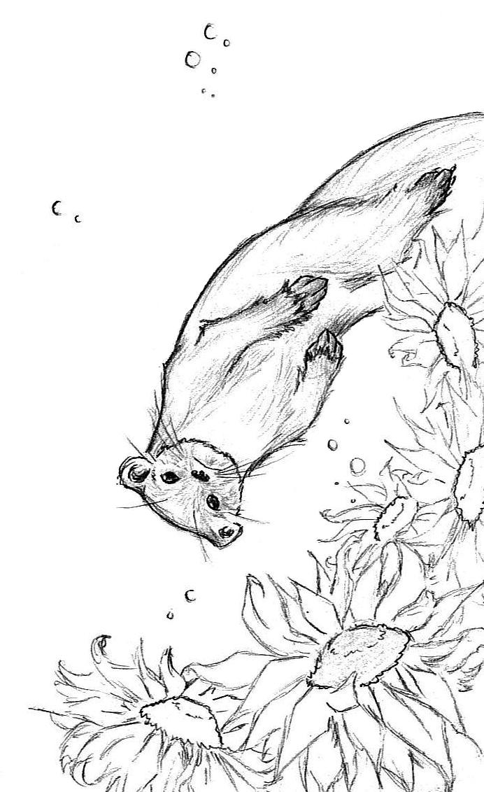 http://fc05.deviantart.net/fs26/f/2008/168/3/3/Otter_and_Sunflowers_by_Twilight_Kairi.jpg