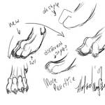 Paw Practice- Critique Wanted