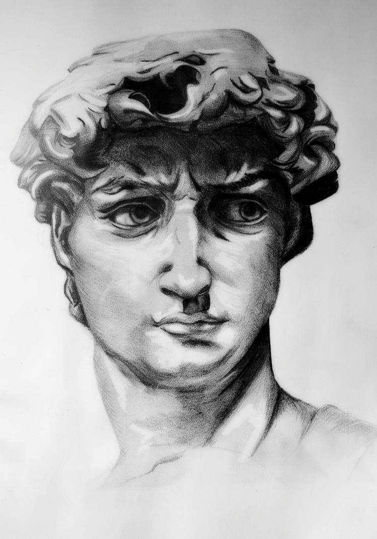 the gallery for gt david michelangelo drawing