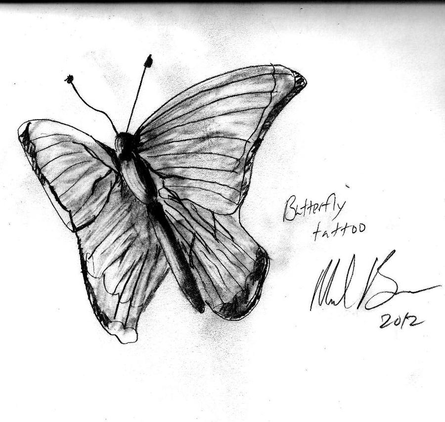 Butterfly Flying Drawing