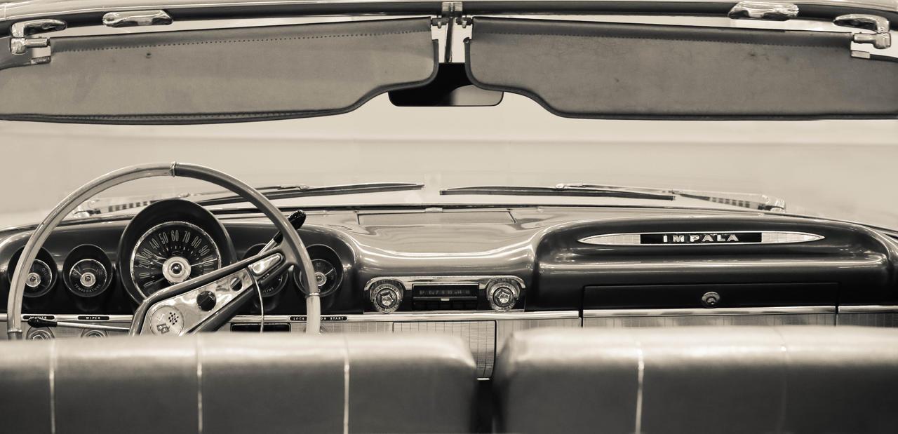 Impala by Canankk