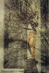 Reflections of Art Nouveau by Canankk