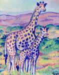 Majestic Giraffes