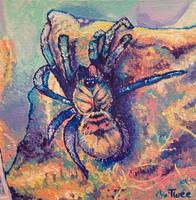Majestic Tarantula