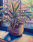 Moody House Plant