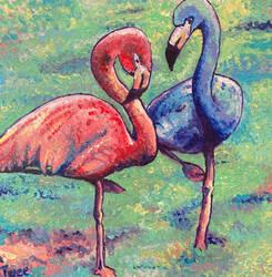 Majestic Flamingos