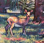 Majestic Appalachia Deer