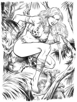Shanna the She-Devil inks