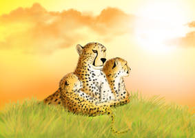 Cheetah and cubs by MovieBuster