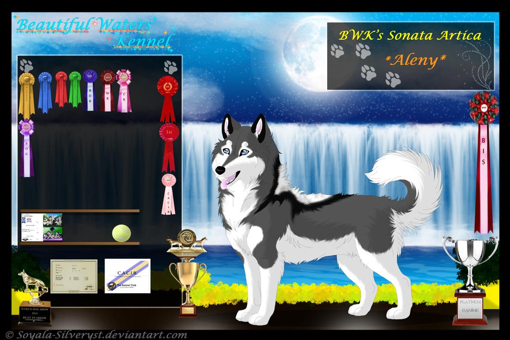Image Result For Siberian Husky Stud
