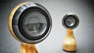 Globule wood full HD by 3DEricDesign