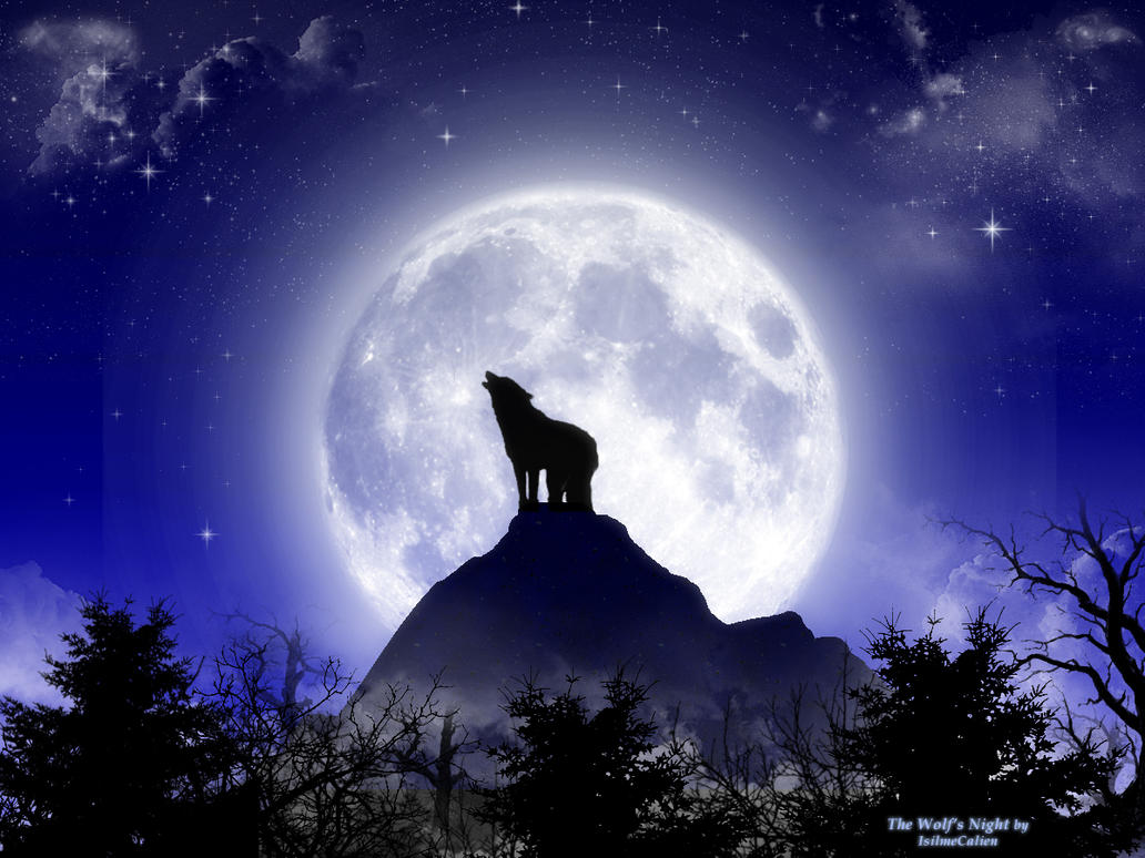 Image Result For A Howling In