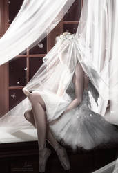Bride of the Light