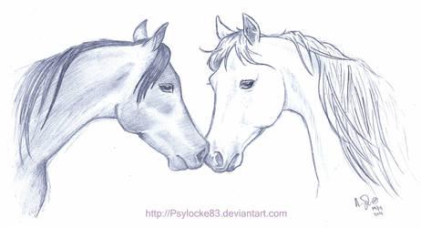 Arabians - quickie request