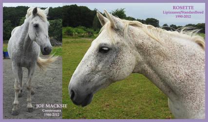 Joe Macksie + Rosette by Psylocke83