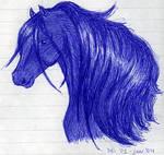 Horse: Storm