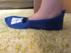 251: Cinderella's slipper