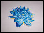 Negative Water Lily
