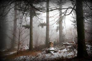 les hivers de notre epoque by deadforest17