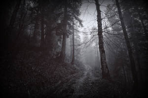 to wander eternally by deadforest17