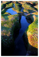 My Miniature Valley by cubeix