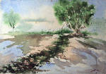 landscape 102