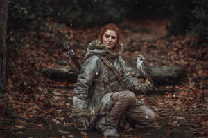 the redheaded Wildling
