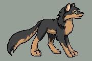 http://fc07.deviantart.com/images3/i/2004/105/b/1/Wolf.jpg