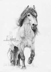 Dole Horse