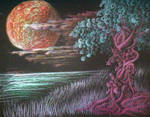 Moon n Tree