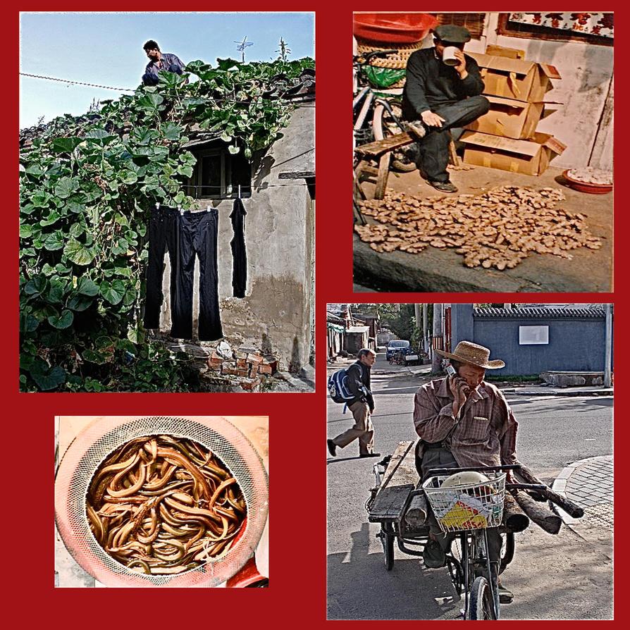 Street. Hutong's. China by jennystokes
