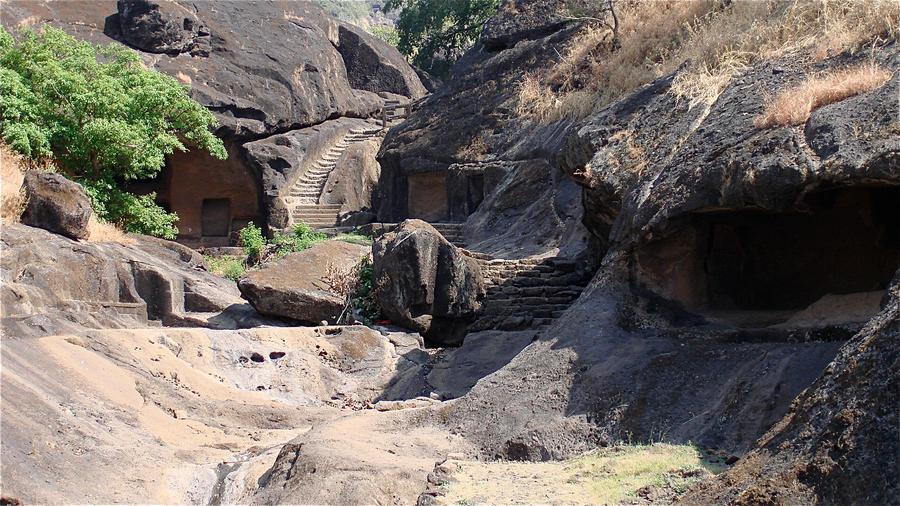 Sanjay gandhi National Park 4 India by jennystokes