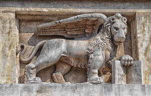Lion 2. Italia. by jennystokes