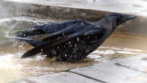 Bath. by jennystokes