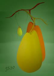 Forbidden  fruit.